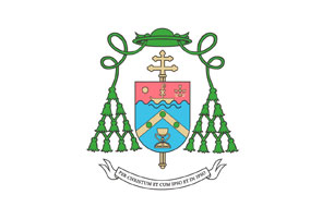 La acogida en la Iglesia, como primer anuncio Carta semanal del arzobispo de Valencia, monseñor Carlos Osoro Sierra