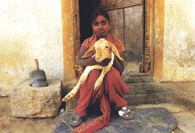Mujeres y niñas de la India enfermas de lepra cuentan sus casos en un libro de Fontilles Con motivo de la celebración del Día Mundial contra la Lepra
