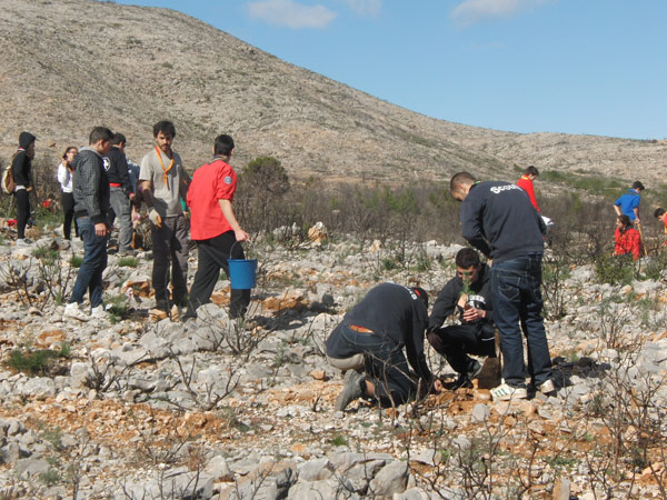 Brotes verdes y auténticos para los montes valencianos Más de 350 'scouts' limpian y reforestan en Llombai una de las zonas afectadas por los incendios de junio del pasado año