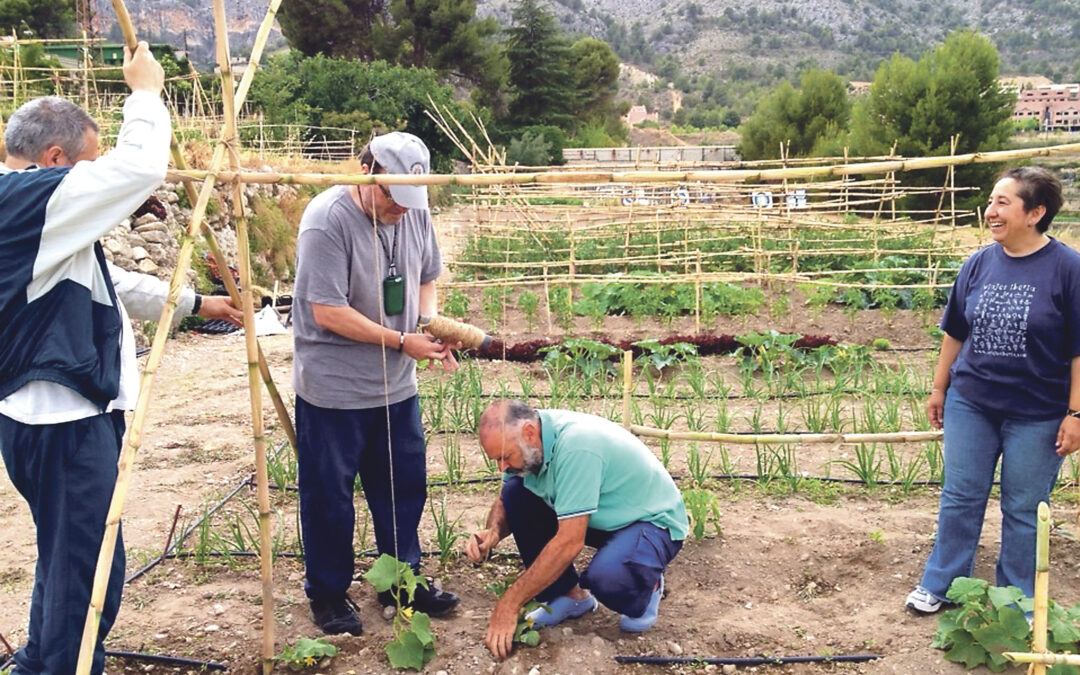 Cáritas de Alcoi planta un 'huerto social' que da de comer a ocho desempleados El Ayuntamiento cede los terrenos y el agua de riego gratuitamente