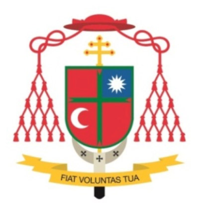 Mi solicitud y compromiso por las misiones Carta semanal del cardenal arzobispo de Valencia, Antonio Cañizares