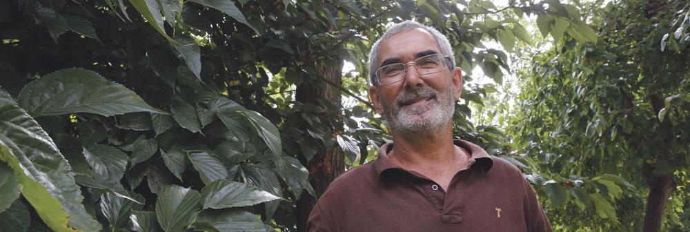"""""""El Sínodo sobre la Amazonía es para ser presencia del Evangelio"""" 9 d'Octubre: Así dará gracias a Dios Valencia desde su Catedral por haber recobrado su vida de fe en 1238"""