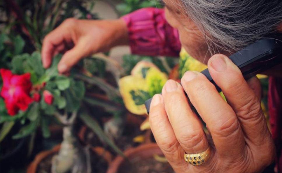 Voluntarios al habla: 'Operación Caperucita' Un grupo de mujeres de Valencia llama por teléfono a diario a  mayores que viven solas durante el periodo de confinamiento