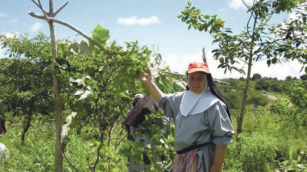 «Los misioneros necesitan más ayuda que nunca» Domingo 18, Jornada Mundial de las Misiones