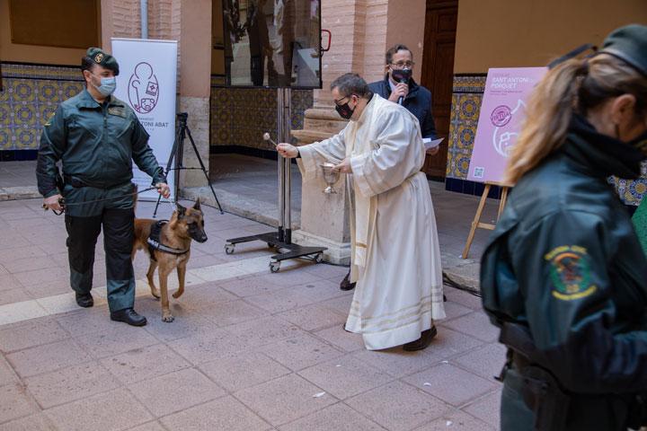 Bendiciones y desfiles virtuales en la fiesta del patrón de los animales En Valencia envían más de 500 fotografías para el desfile s