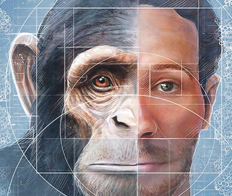 Ciencia sin conciencia: embrión mono-hombre El Arzobispo afirma que son 'progresos' científicos contra Dios y contra el hombre y los investigadores del Observatorio de Bioética de la UCV ven serios inconvenientes en este experimento